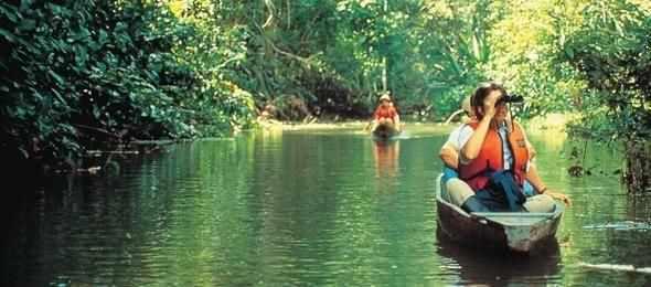Viaggio nella giungla dell'Ecuador